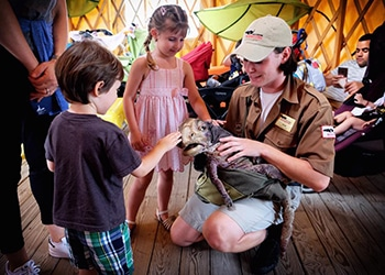 Kid's dinosaur adventure park