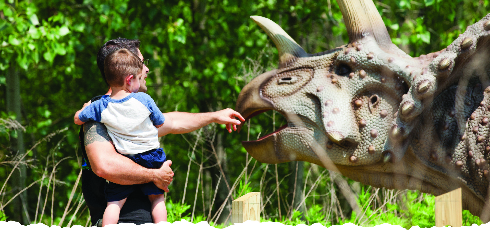 New Jersey Dinosaur Park